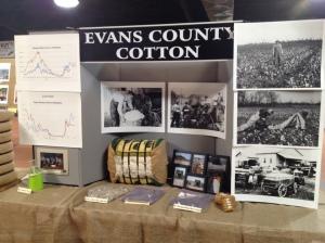 evans county1