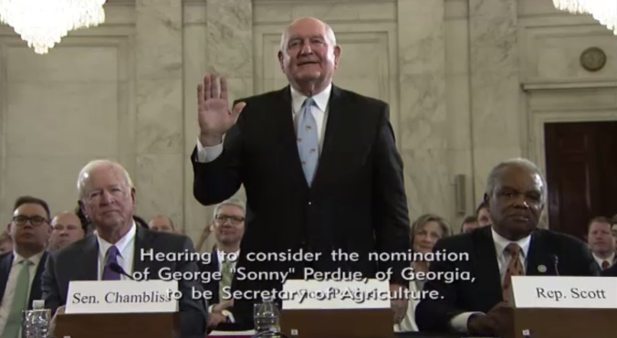 screenshot_Sonny Perdue hearing2